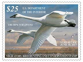 2016-17 Duck Stamp